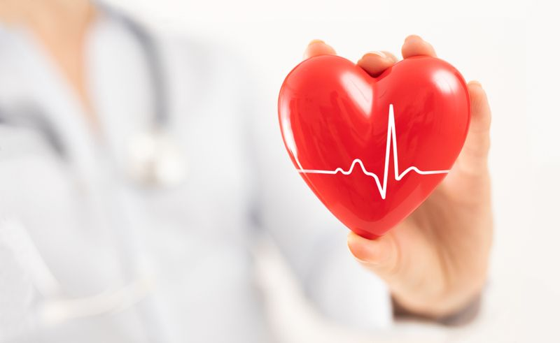 doctor holding out heart; heart health concept