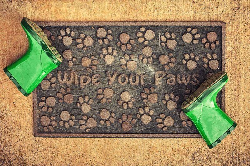 Wipe Your Paws door mat
