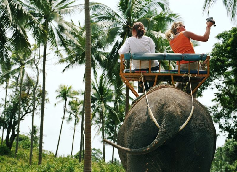 People riding an elephant in Thailand