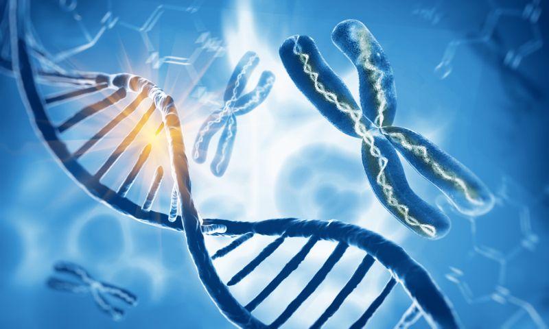 digital illustration of DNA and chromosomes