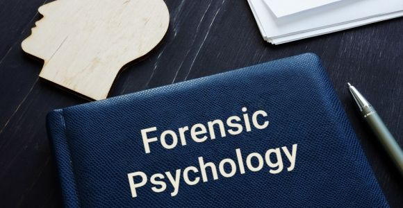 Forensic Psychology in the Legal System