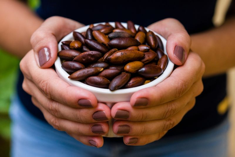 woman's hands holding bowl of baru nuts