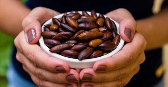 Are Baru Nuts a New Superfood?