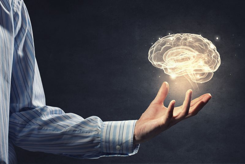 person holding a brain in his hand