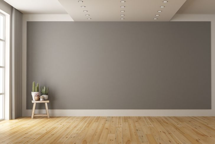 Empty minimalist room with gray wall on background and plant on wooden stool - 3d rendering Note: the room does not exist in reality, Property model is not necessary