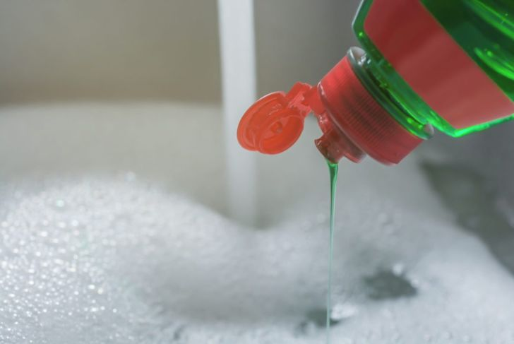 Dish soap trap to get rid of fleas