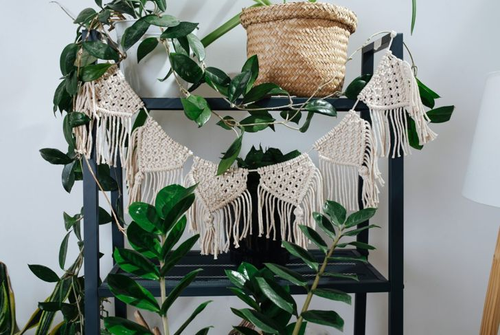A fringed macramé garland hanging on a plant stand