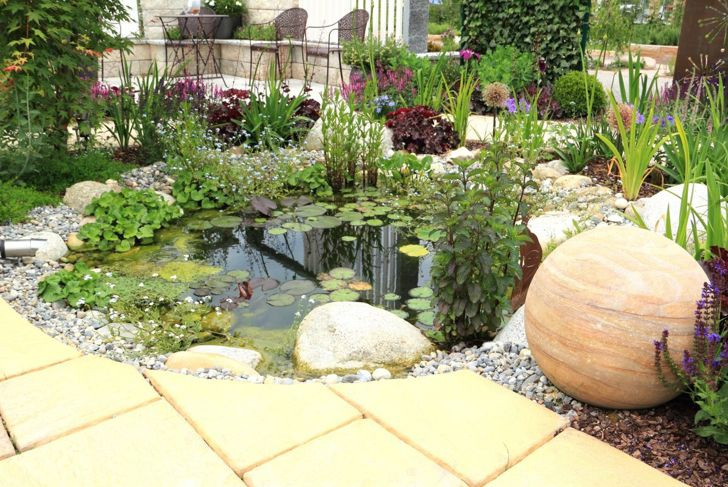 pond feature natural waterscape