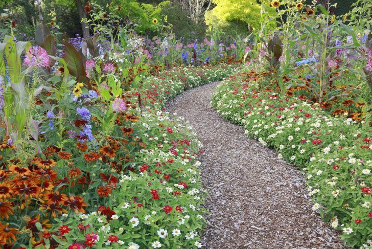 Landscape ideas flower-lined path