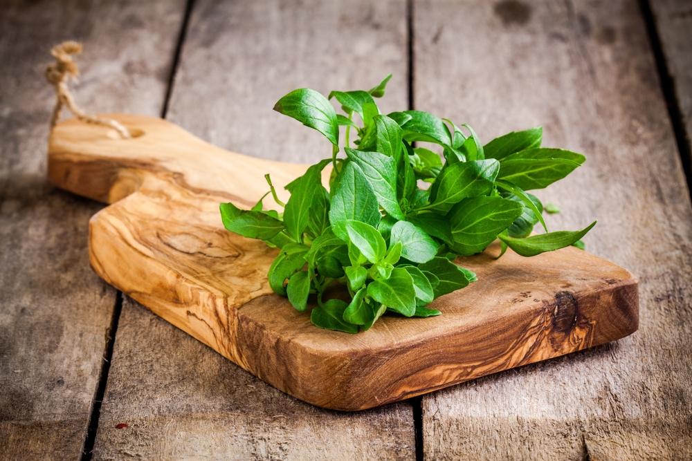 herbs refrigeration