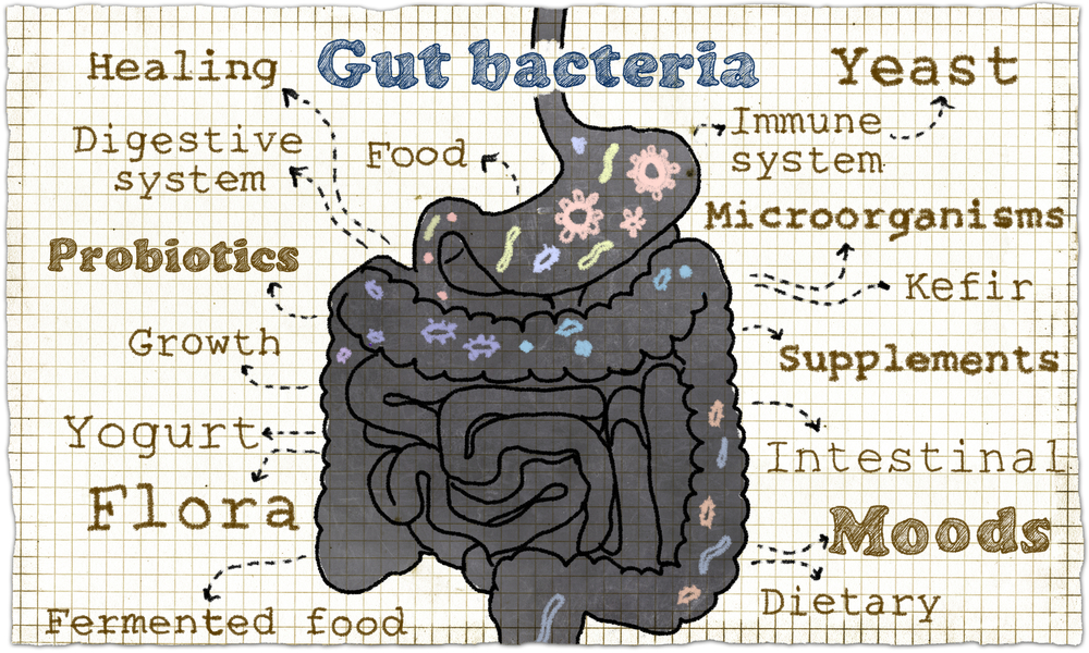 gut-bacteria-may-affect-parkinsons-2