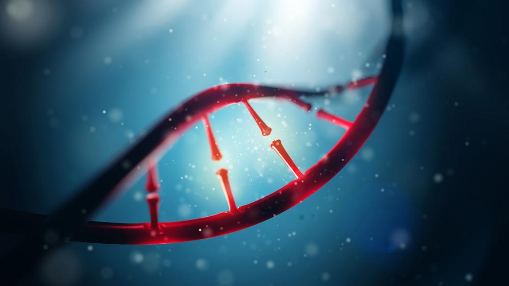 family history Alzheimer's Disease