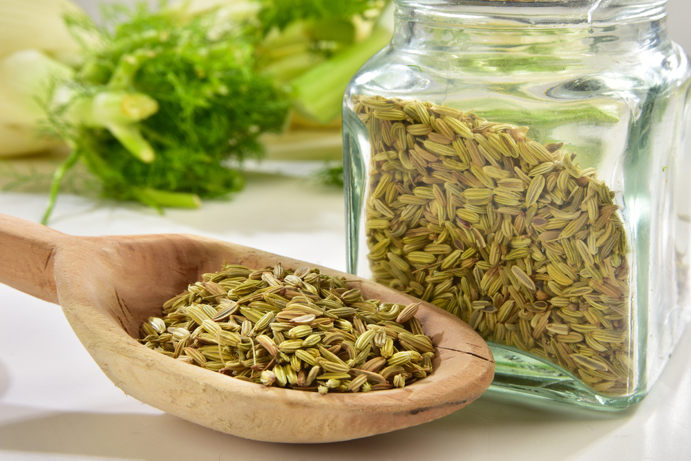 fennel for bad breath