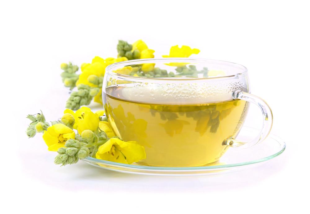 tea Bronchitis