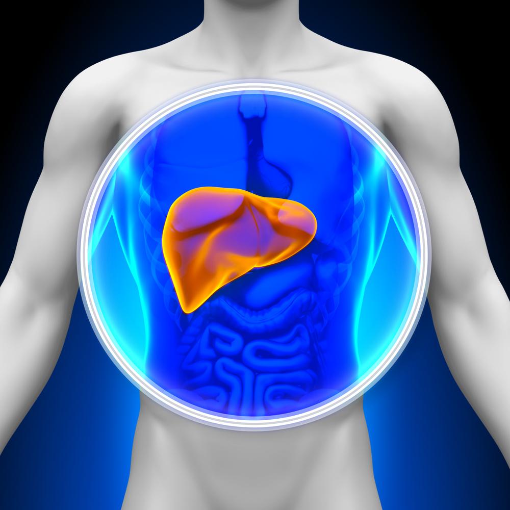 autoimmune liver enzymes