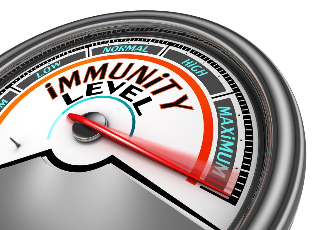 immune kombucha