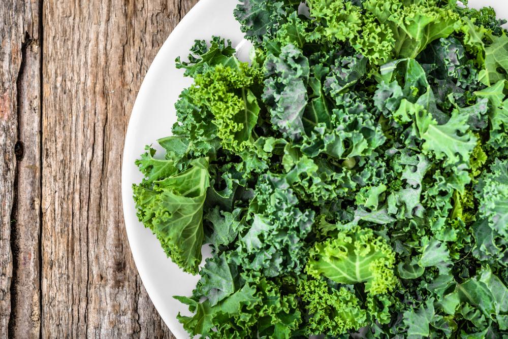 kale high in calcium