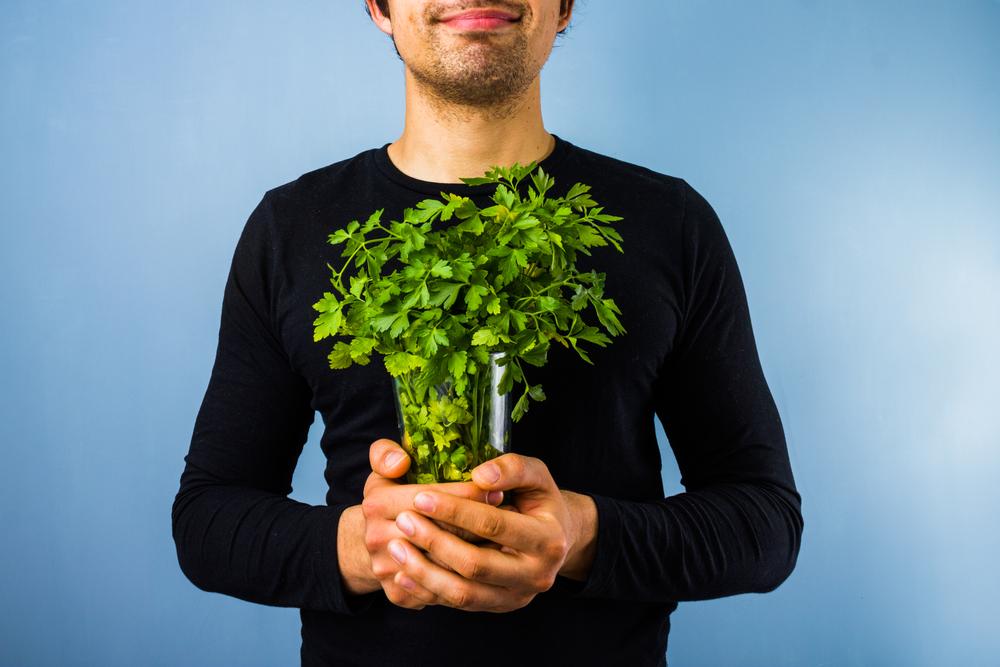 disease parsley