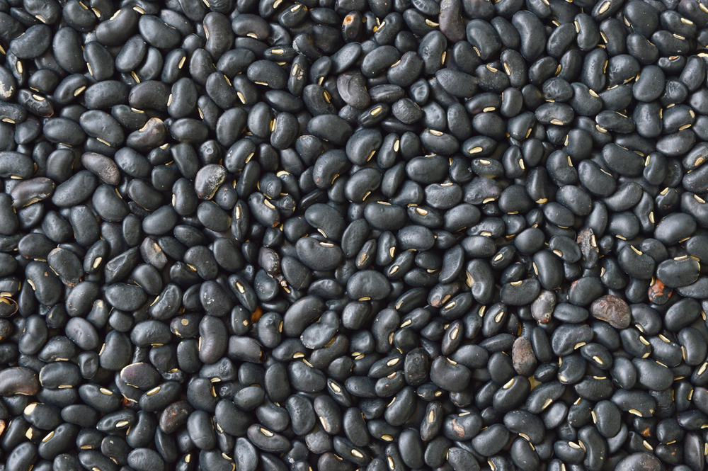 black bean Vegetarian Recipes