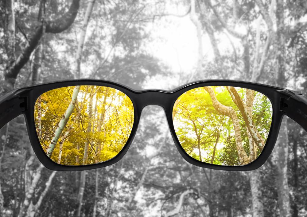 color poor vision