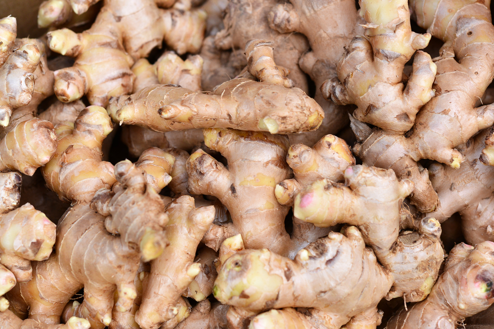 ginger abdominal pain