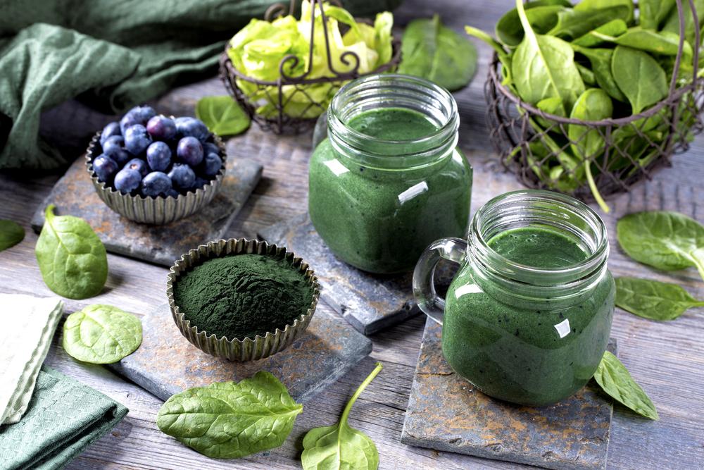 cholesterol blue-green algae