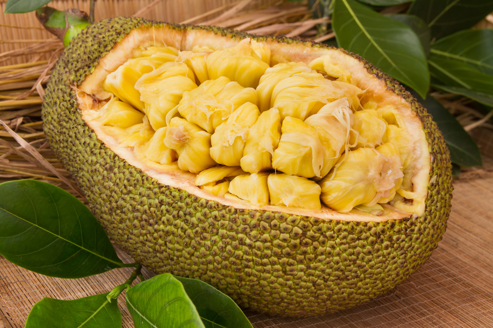 cancer Jackfruit