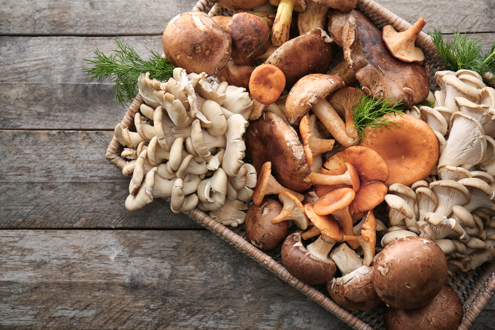 mushrooms weight loss