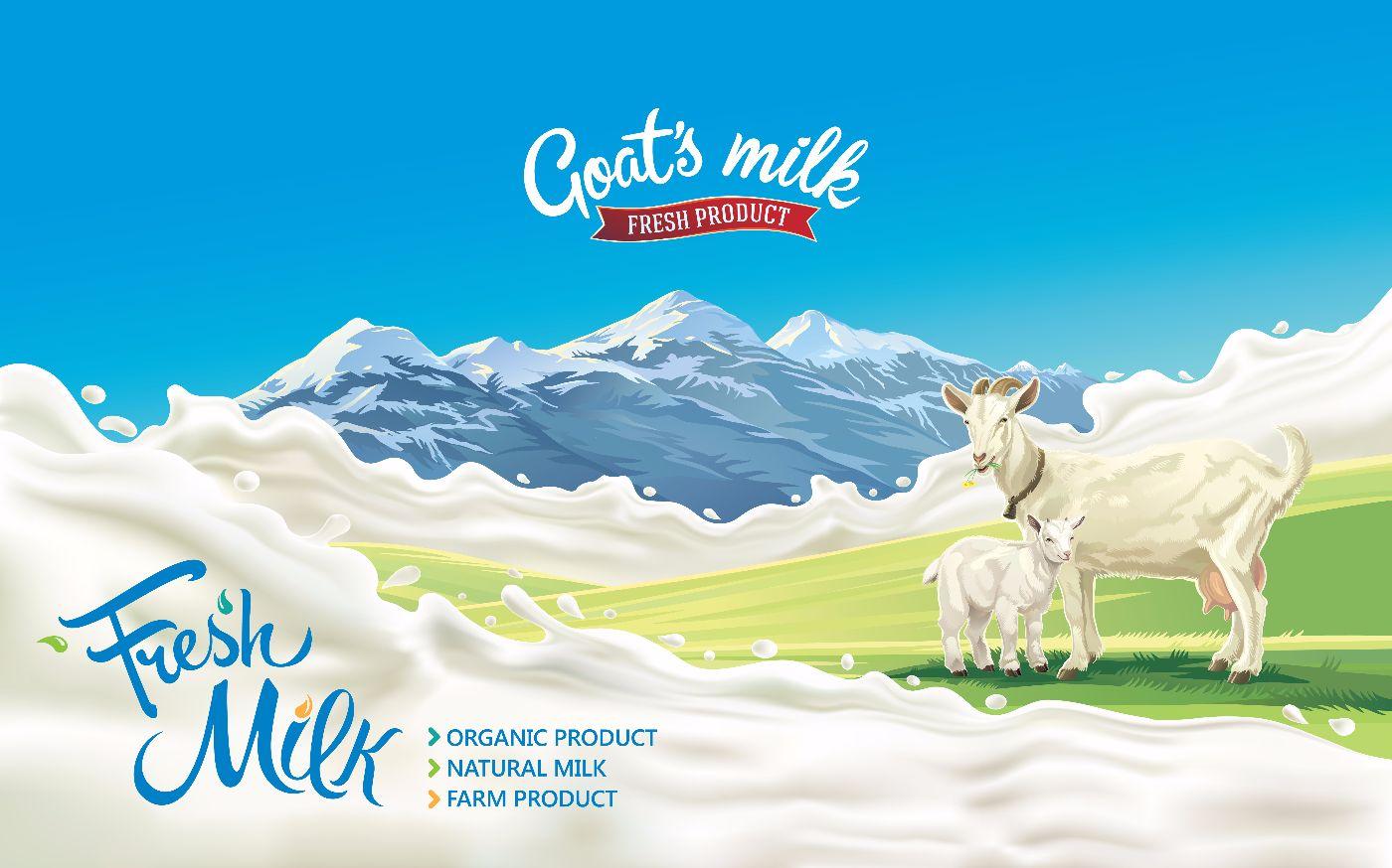 inflammation goat's milk