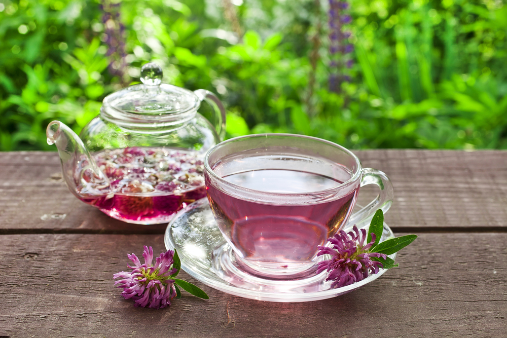 tea estrogen deficiency