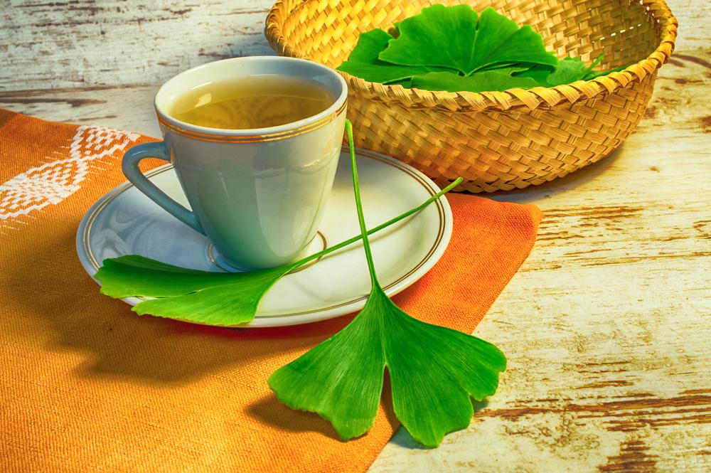 tea Ginkgo Biloba