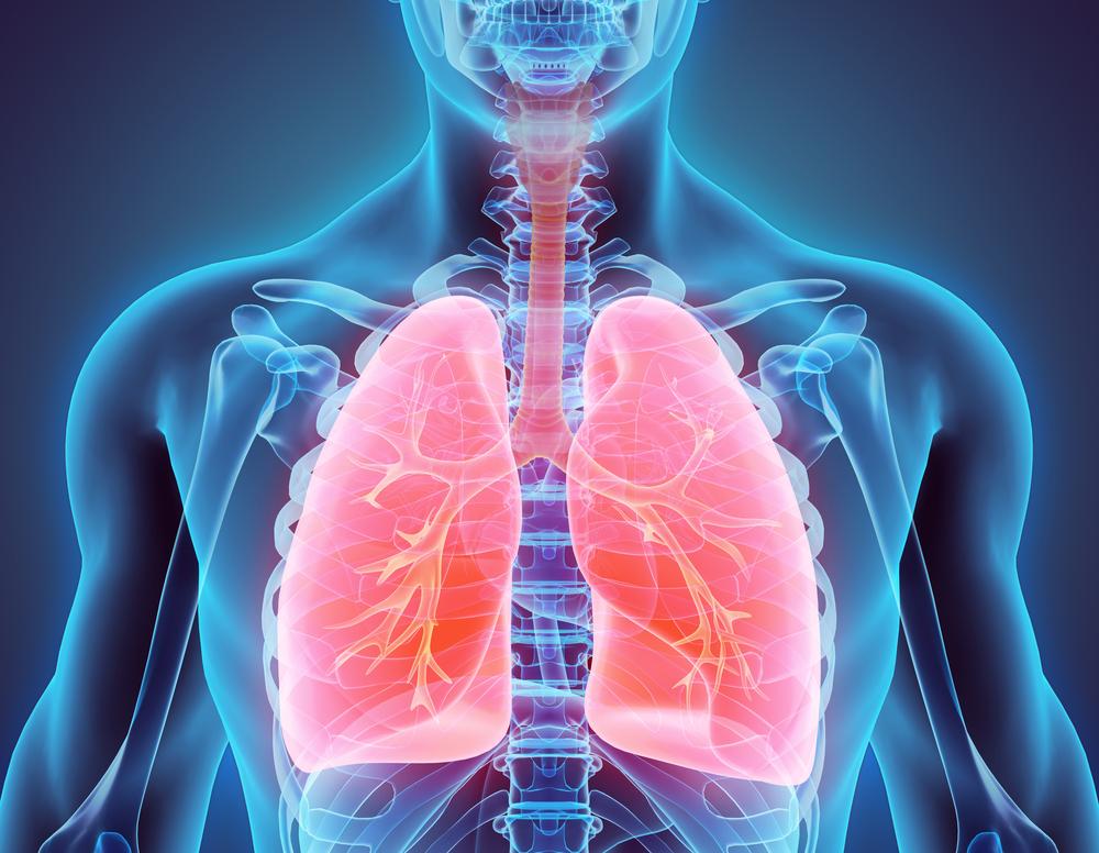Alleviates respiratory disorders