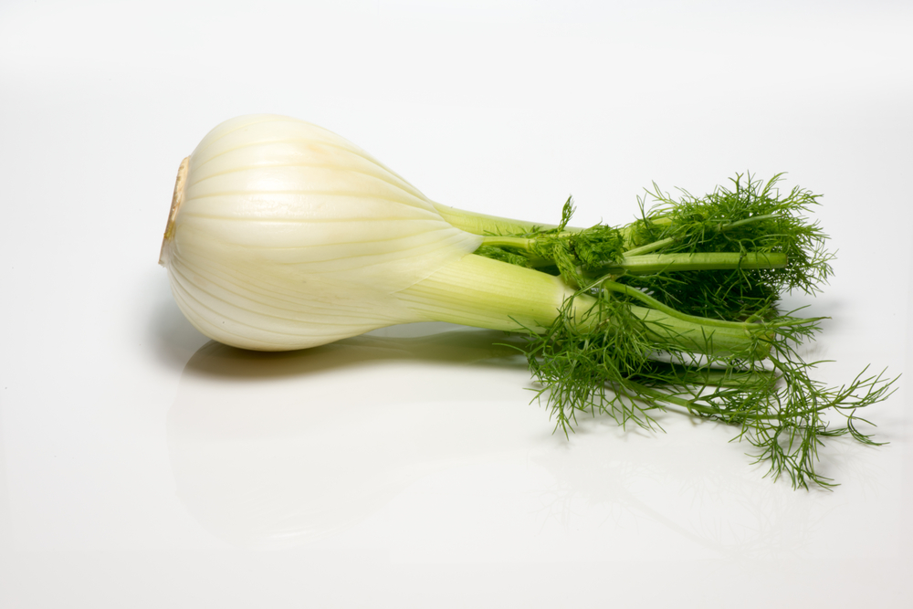 Cope with Seasonal Allergies Fennel