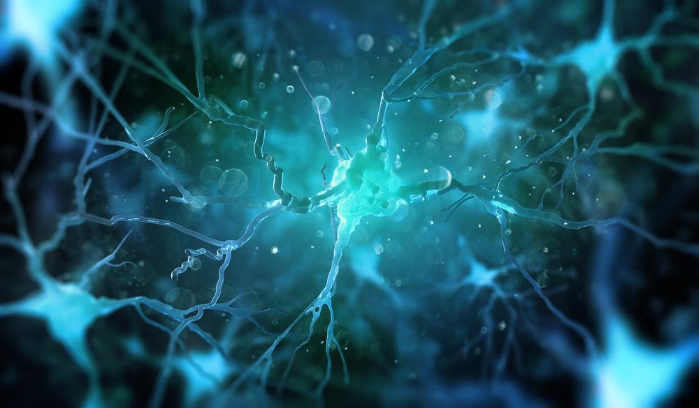 Improves Nerve Function