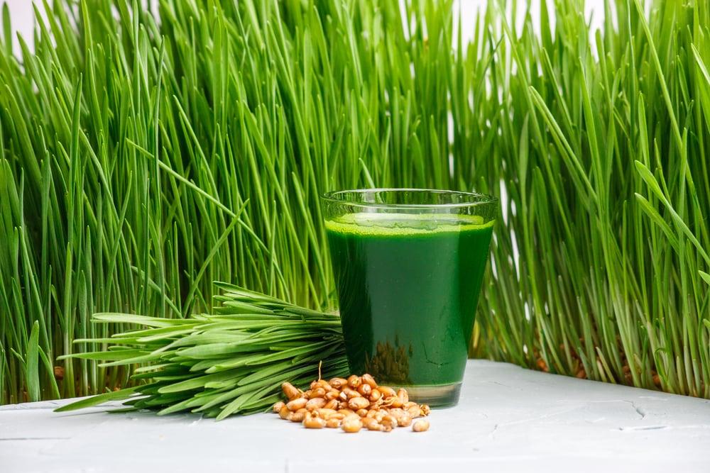 Nutrients found in wheatgrass