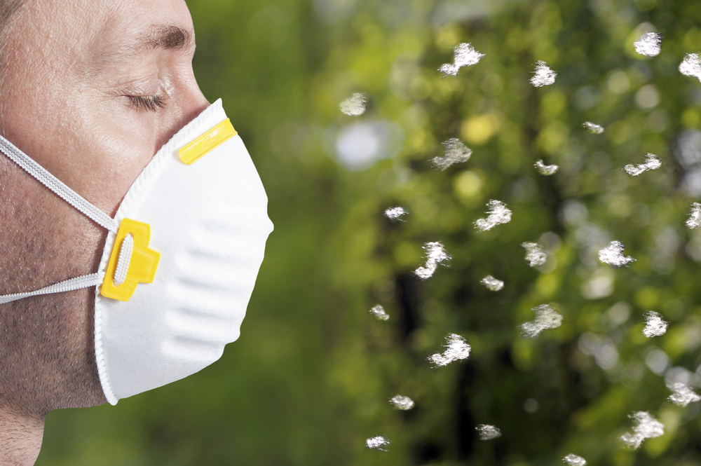 Relief for Allergies