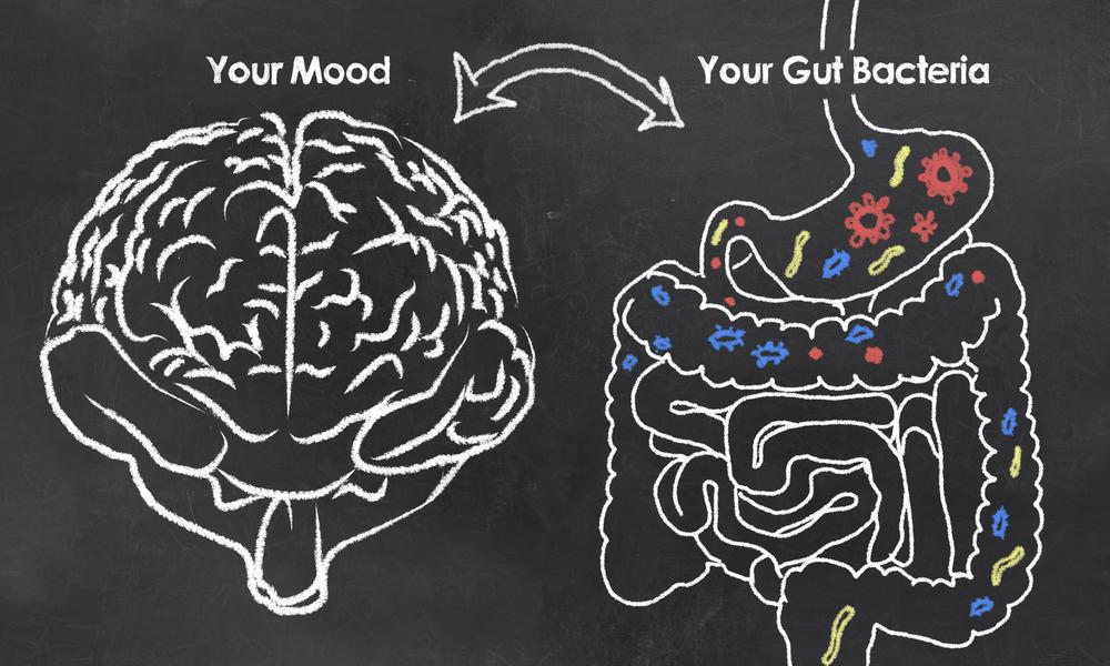 brain Gut