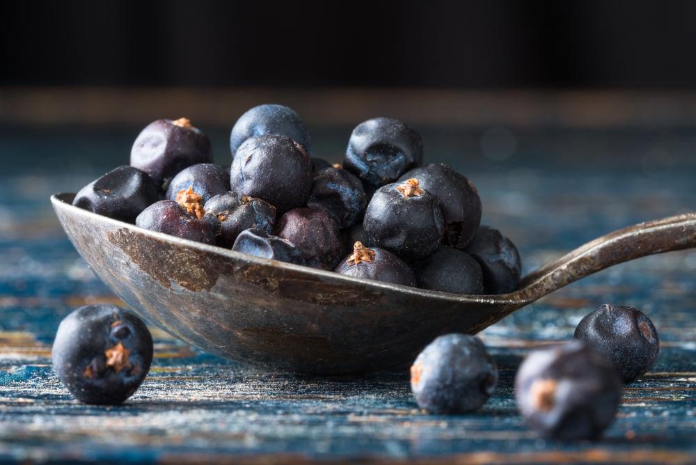 Surprising Health Benefits of Juniper Berries