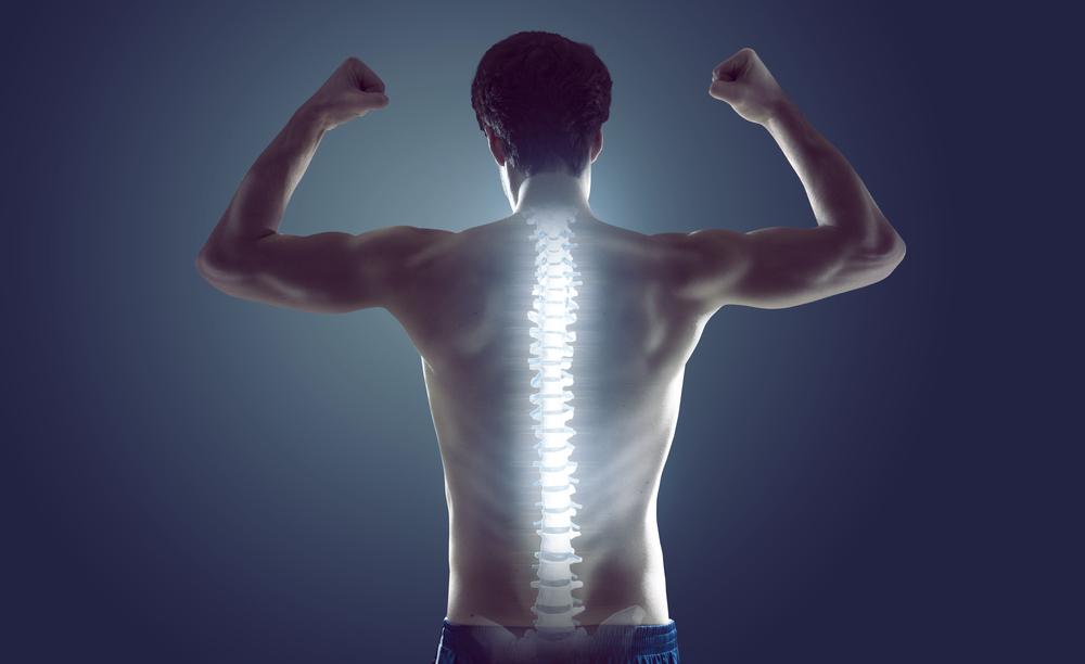 8) Posture and Spine Health Improvement