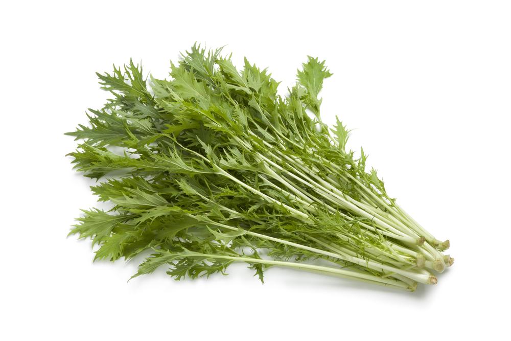 Adding Mizuna Greens to Your Diet