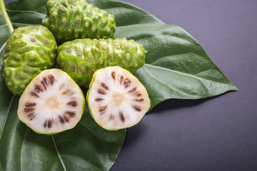 Cancer and Chronic Conditions noni juice