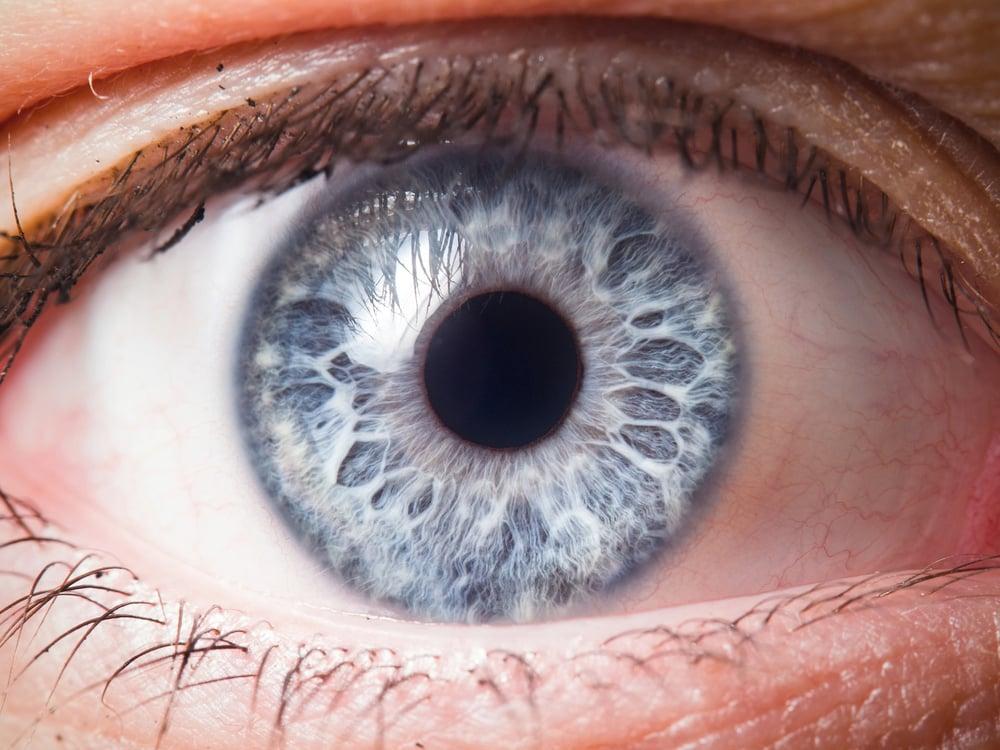 Help Save Your Eyesight