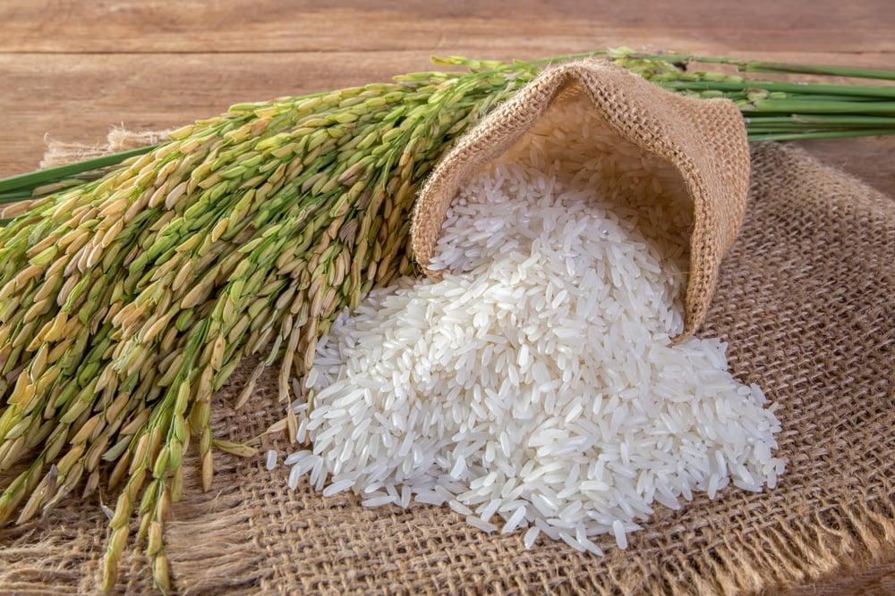 High-Amylose Rice