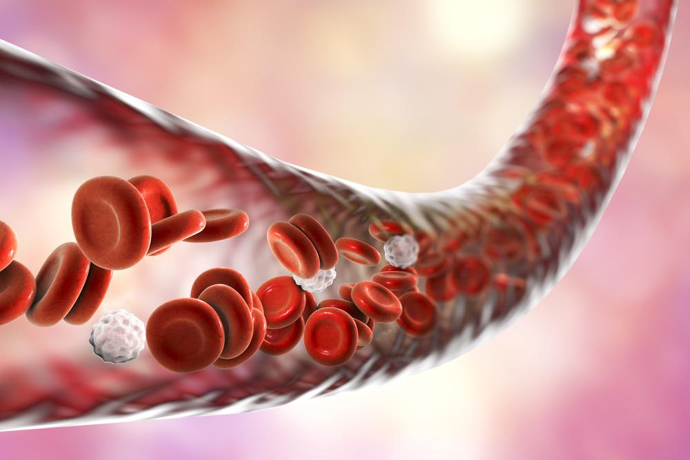 Maintain Cardiovascular Health