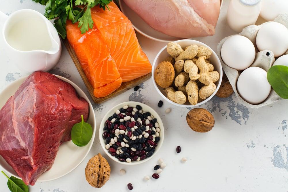 Ten of the Best High Protein Foods