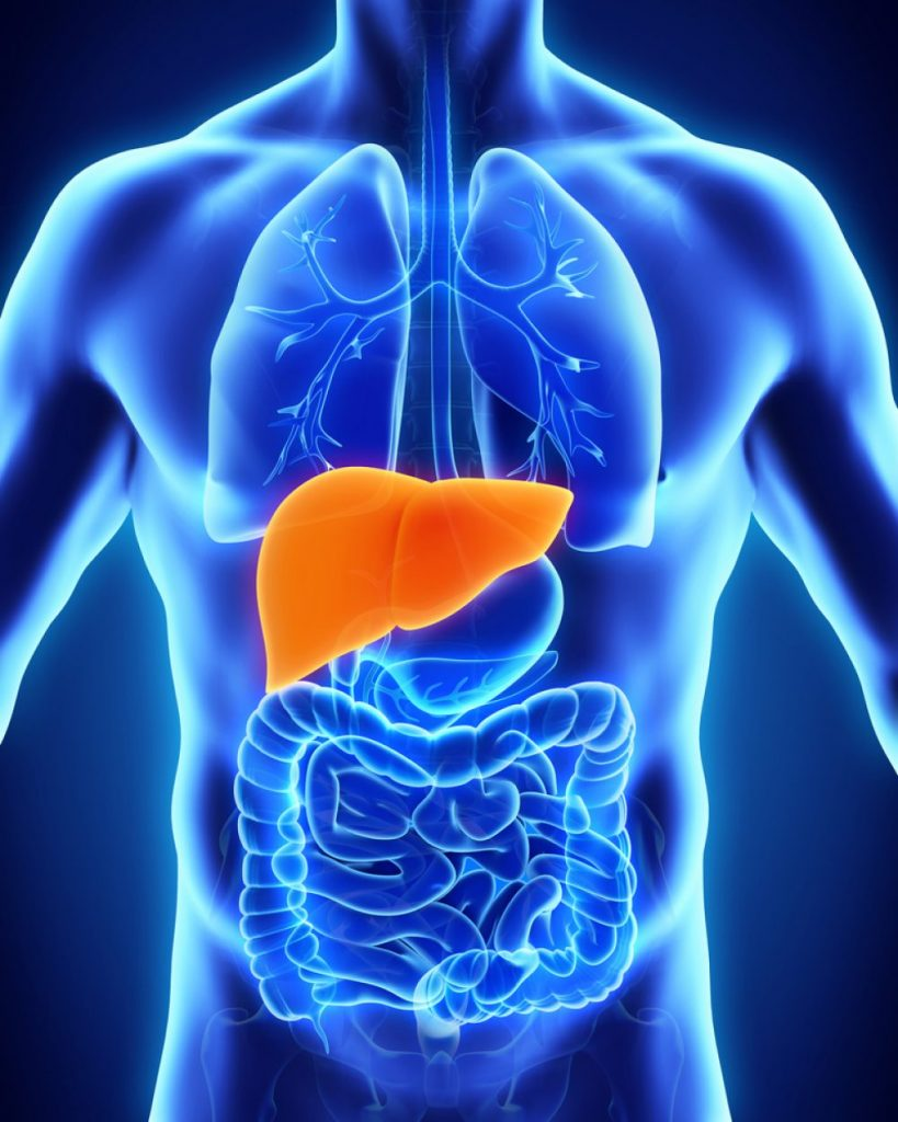 Liver Pain Prevention