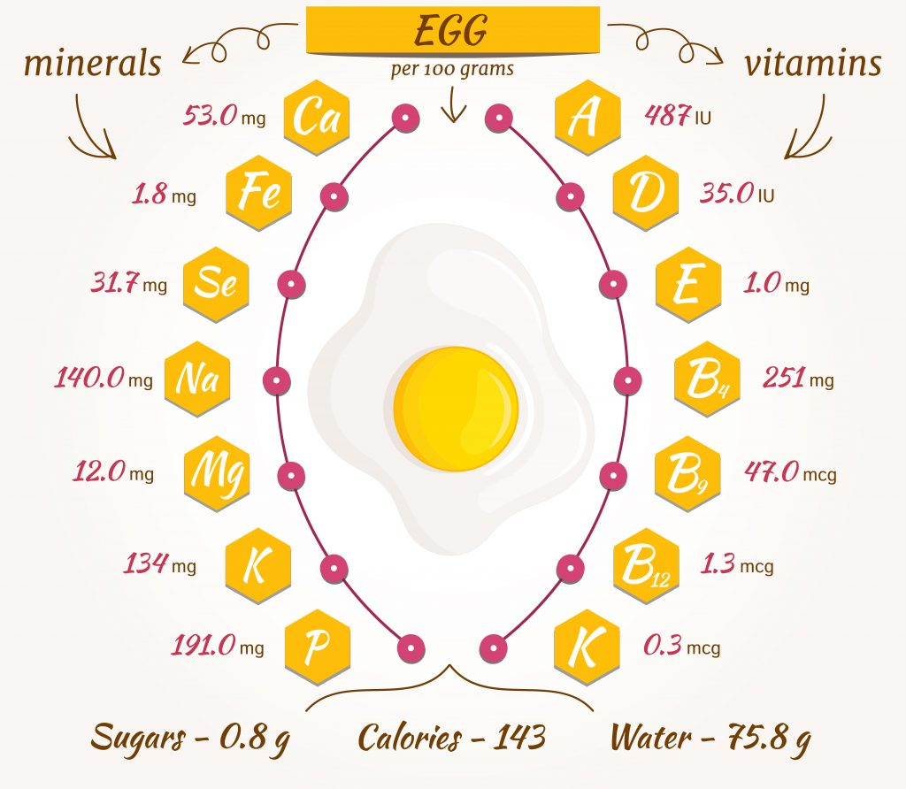 Nutritional Facts for a Large, Hard-Boiled Egg