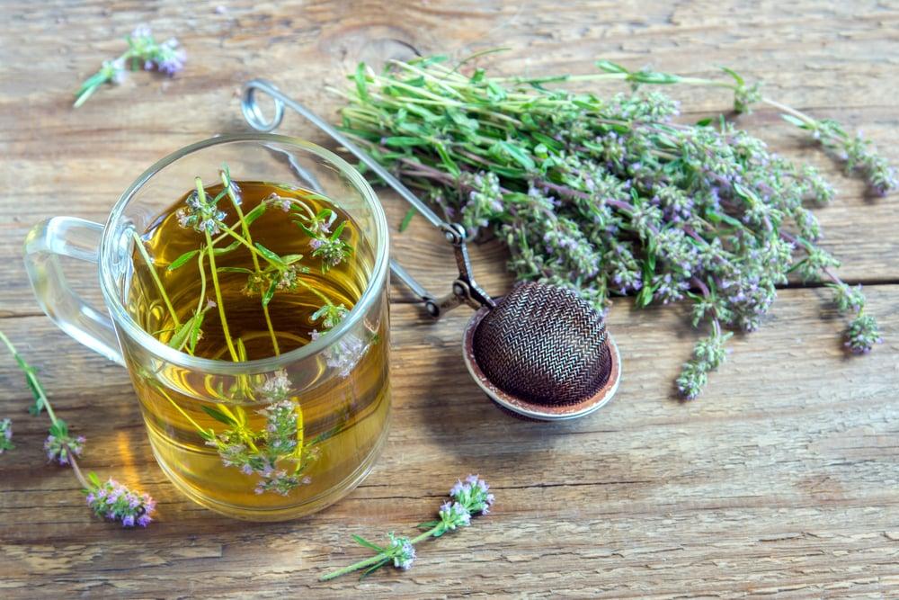 common thyme tea