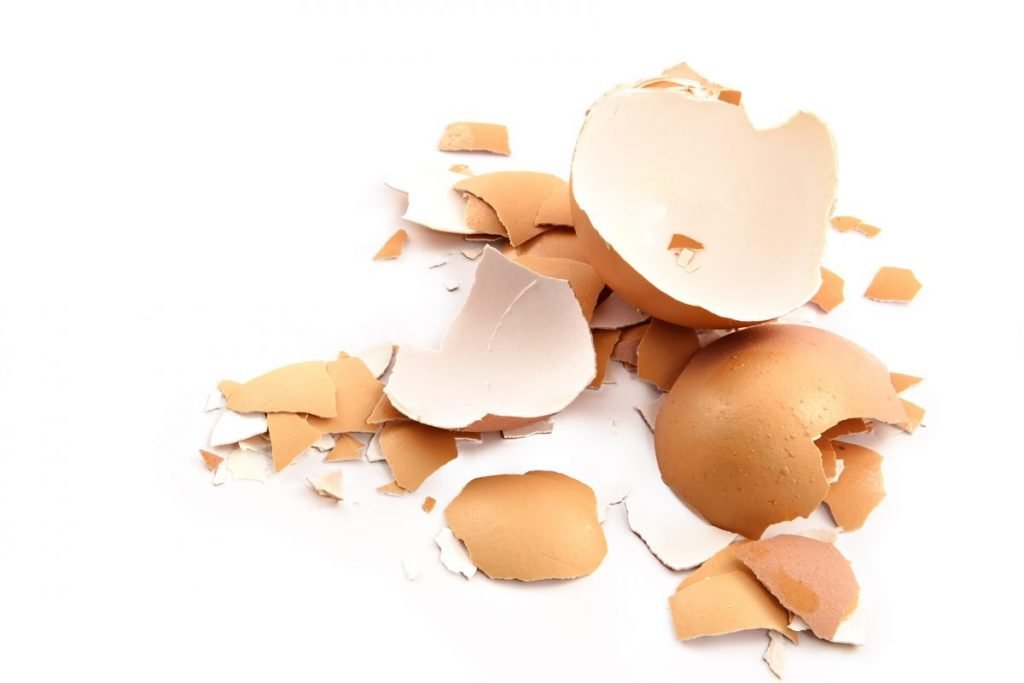 supplements eggshells