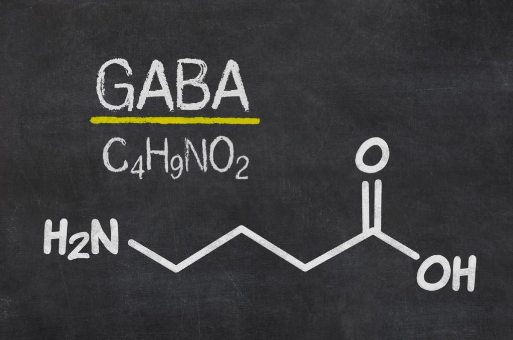 GABA Neurotransmitters